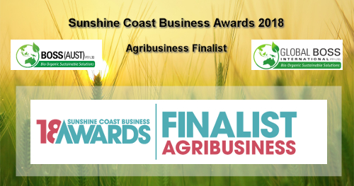 Sunshine Coast Business Award finalist